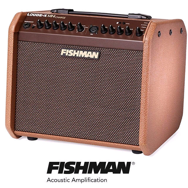 fishman loud box mini charge guitar amplifier 60w battery recharge busking amp bluetooth. Black Bedroom Furniture Sets. Home Design Ideas